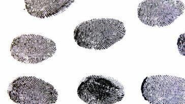 cosa sono e quando si formano impronte digitali